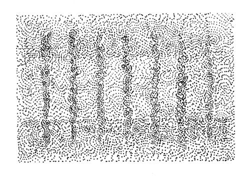 00001100_matrix_synchrony_Tullio_2013