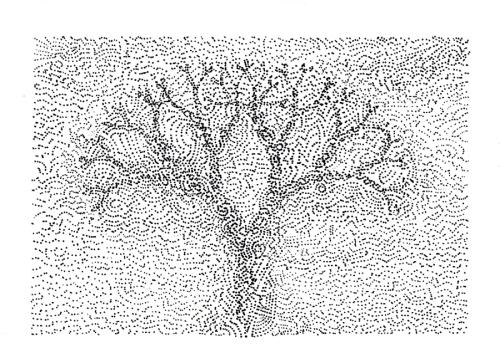 Fractal_Tree_Tullio_2014