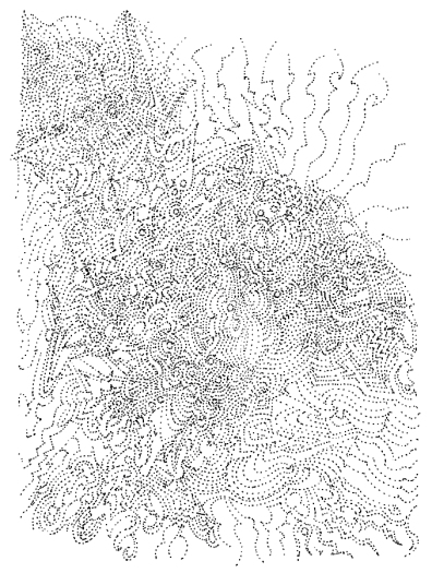 Pattern_Perception_100_Tullio_2015