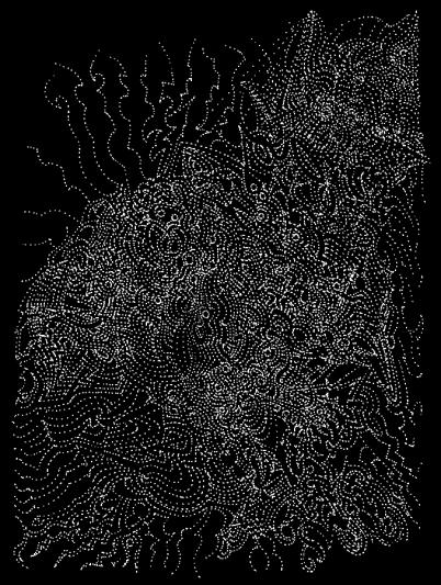 Pattern_Perception_101_Tullio_2015