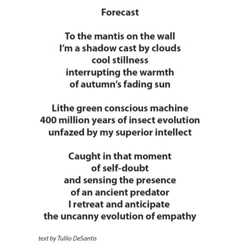 Forecast_poem
